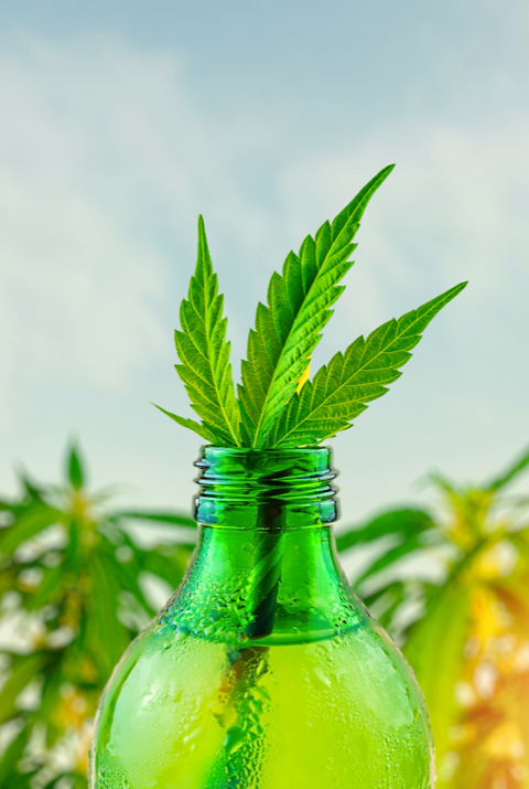 A bottled cannabis beverage with a marijuana leaf inserted into the bottle